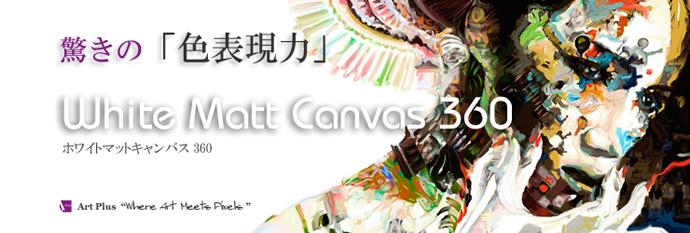 whitemattcanvas360