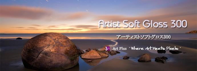 top-artistsoftgloss300